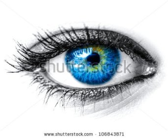 stock-photo-blue-woman-eye-macro-shot-106843871